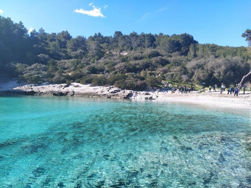 Visit to Žitna bay on the island of Korčula (Jakica Pecotić)