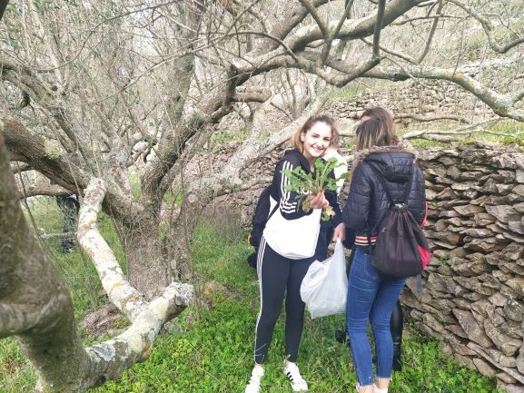 Students explore Nature (recognize medicinal plants and different plant and animal species)